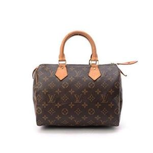 Louis Vuitton small handbag